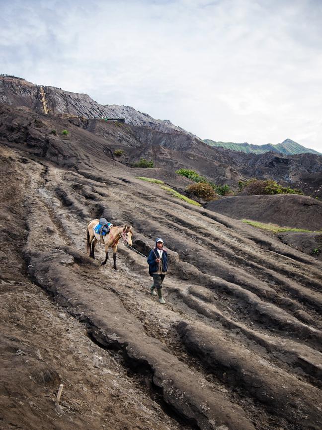 Man met pony bij Bromo