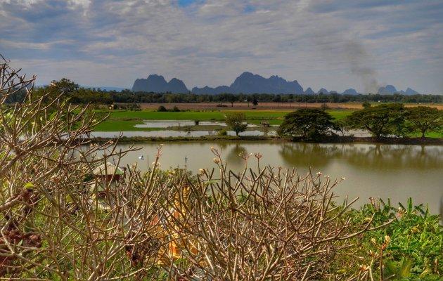 Wandelend langss rijstvelden