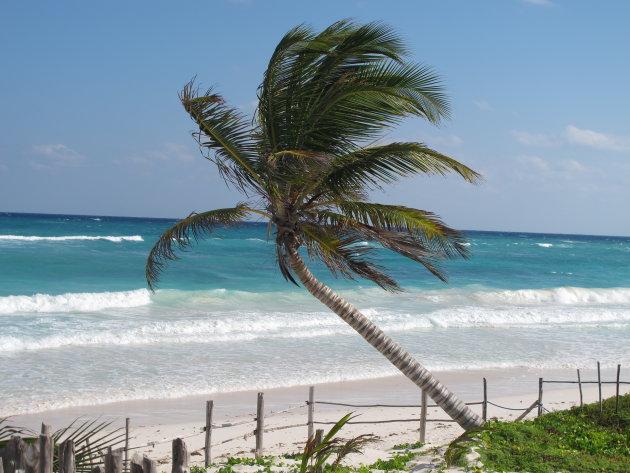 Verblijf op het strand van Tulum