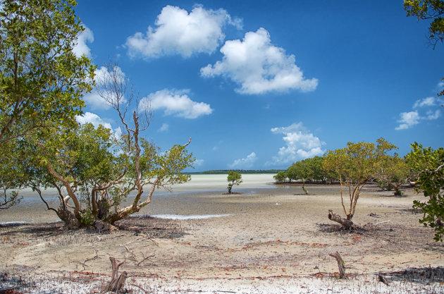 Watamu Marine National Park and Reserve