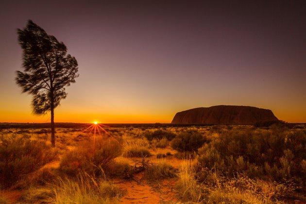 Uluru bij zonsopkomst