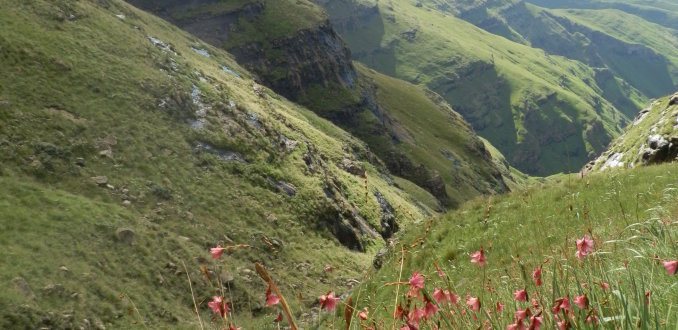Noord-Drakensberg