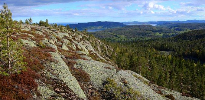 Wandelen in Skuleskogen NP.