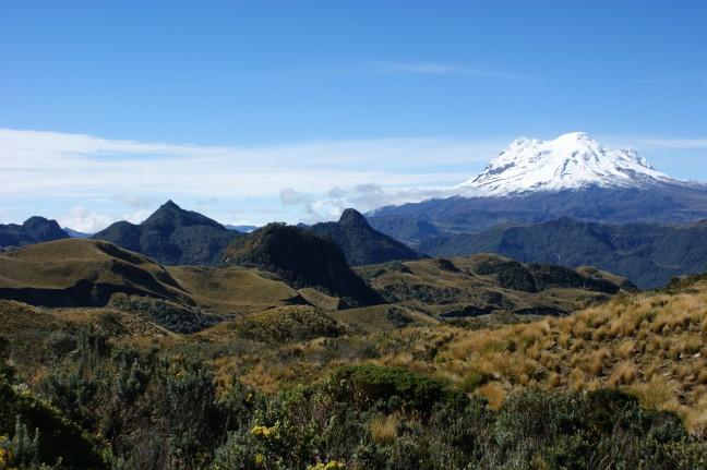 Coloso de los Andes