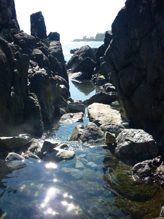 Hot springs Cove