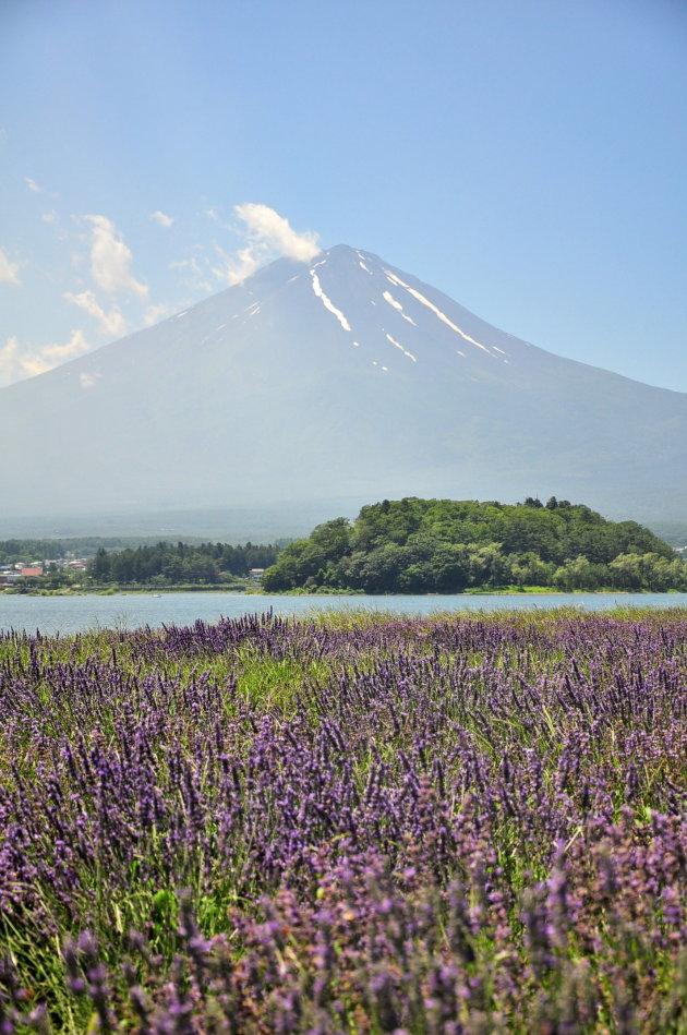 Mount Fuij