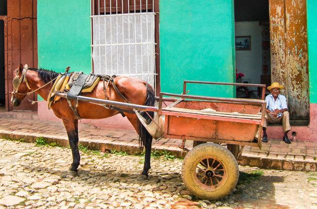 Lang leve de paardenkar