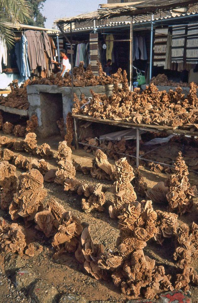 Woestijnrozen