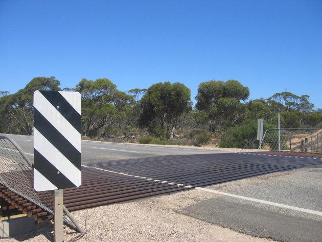 The Nullarbor: typisch outback roadbeeld: veerooster tussen de farms