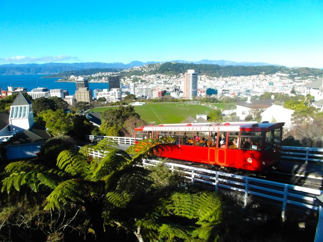 Stedentrip Wellington