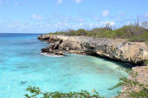 Ruig Bonaire