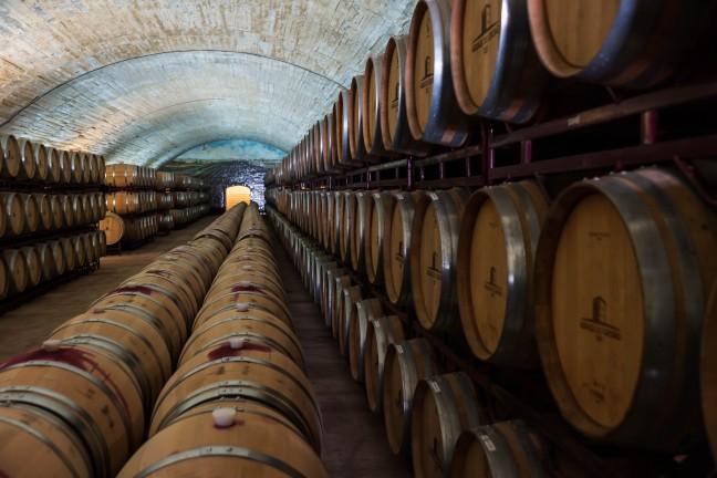 Wijn heel veel wijn