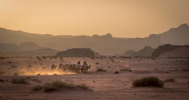 Een karavaan in de Wadi Rum