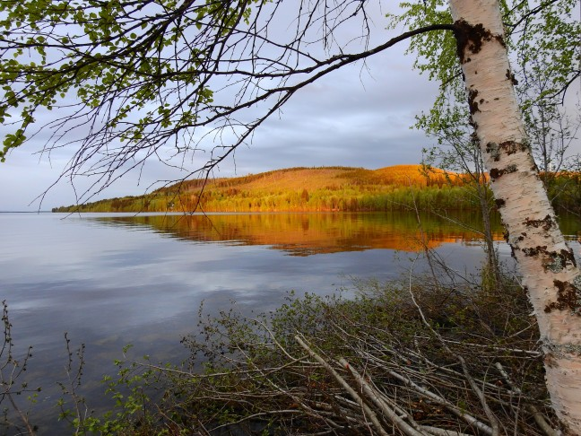 Gouden bergen bij Alanäset