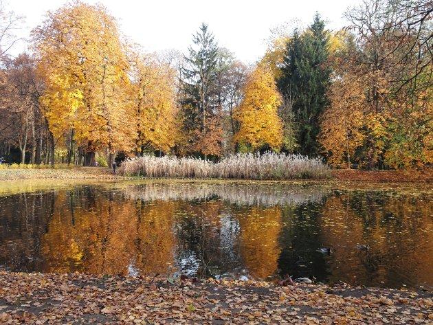 Prachtige herfstkleuren in het Lazienkipark