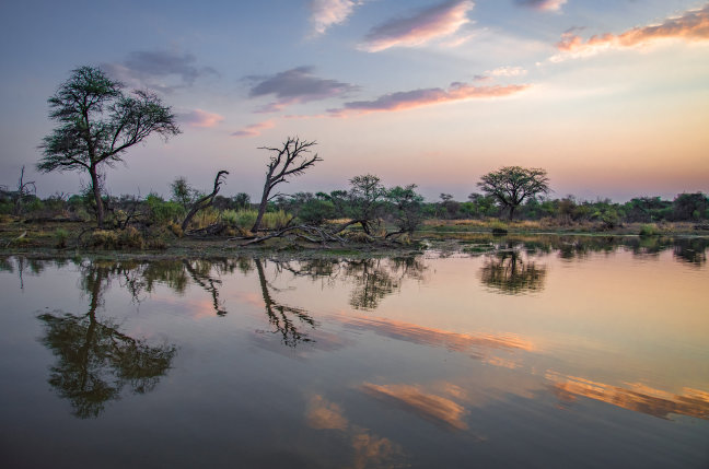 Safari op het water