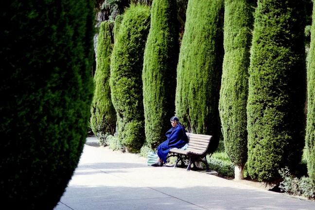rustig zitten tussen het groen