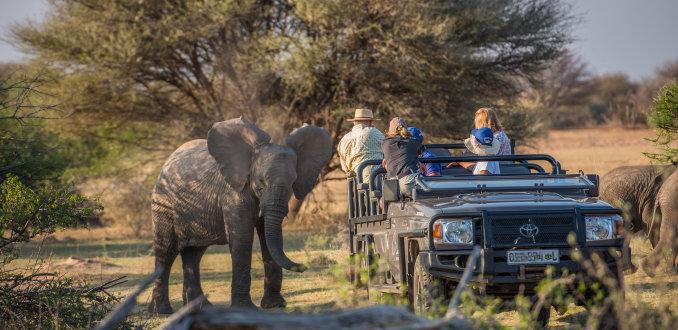 Op safari met de kids