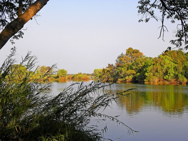 Zambiaans landschap