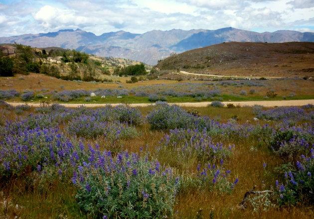 Quebrada Huaytapallana Vallei