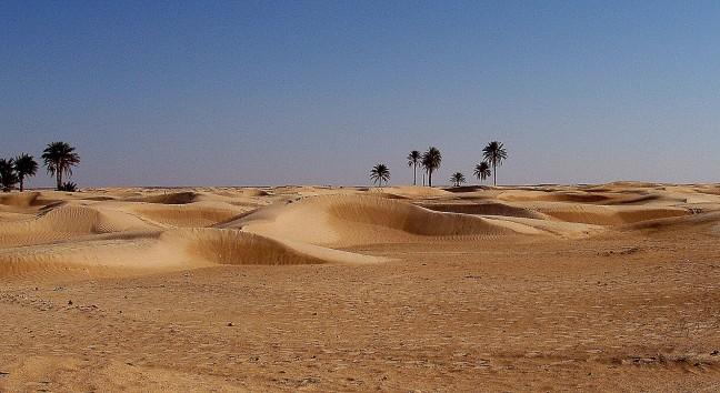 De oase van Douz
