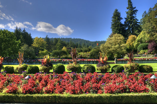 The Butchart Gardens 2