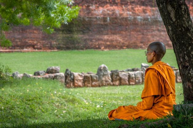 Helemaal zen