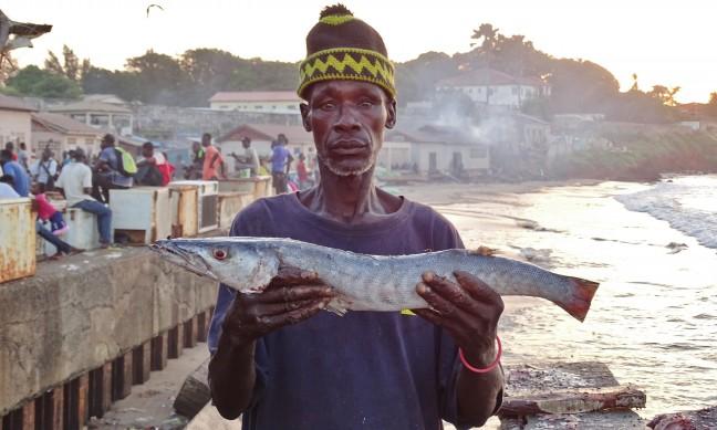 Barracuda schoonmaken