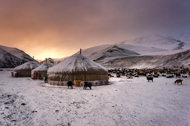 Winter is coming - op zoek naar nomaden in Tsast Uul gebergte