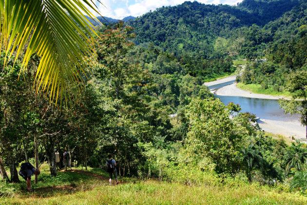 Duik de jungle in bij het Parque de Amistad