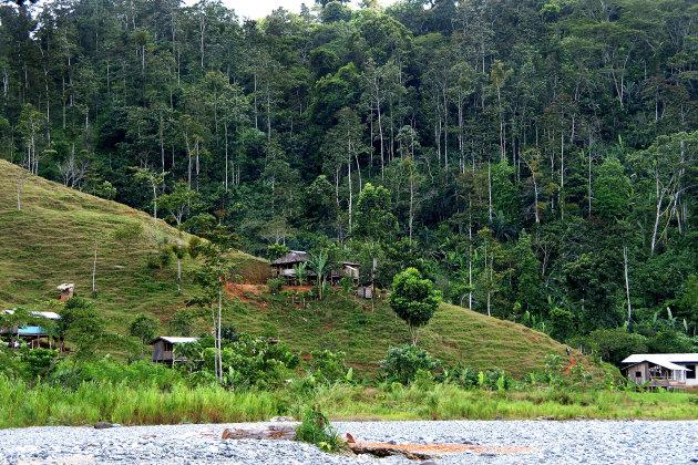 De jungle in met de Naso Teribe