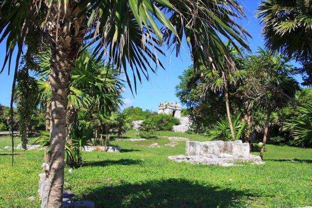 Tropische ruinestad
