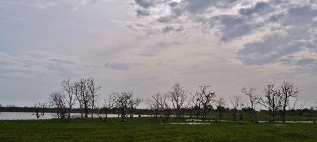 Kataragama lake