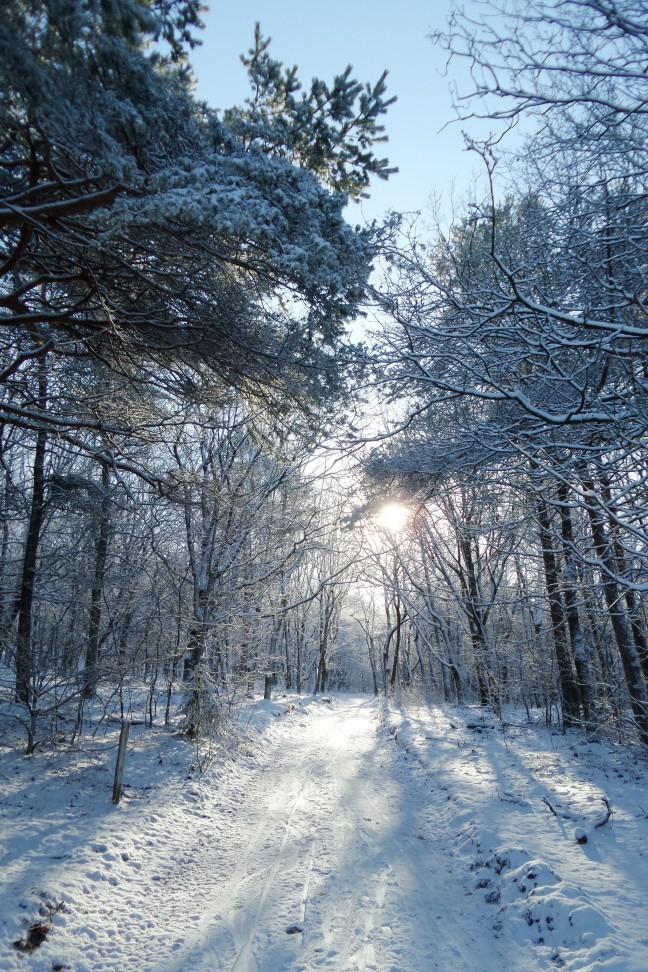 Winters...
