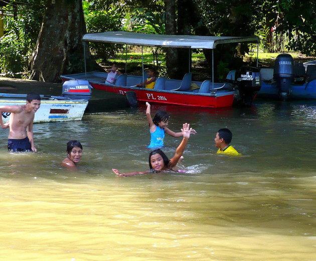 Leven in het regenwoud