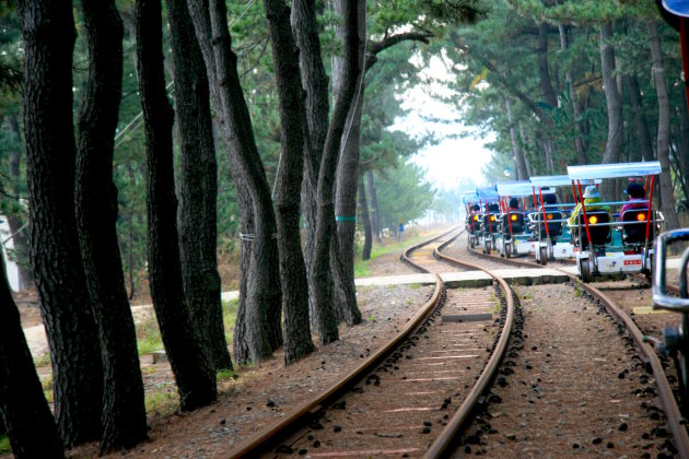 Samcheok Ocean Bike