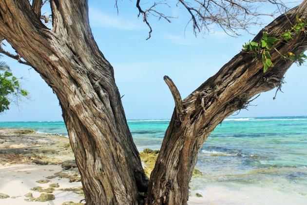 Stranden op Guadeloupe