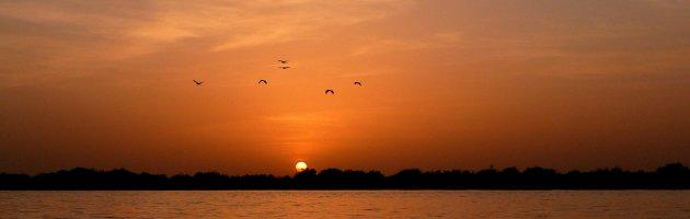 op de pinasse bij zonsondergang