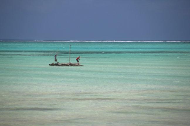onmiskenbaar Zanzibar