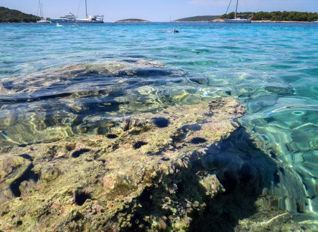 Snorkelen nabij de rotsen.