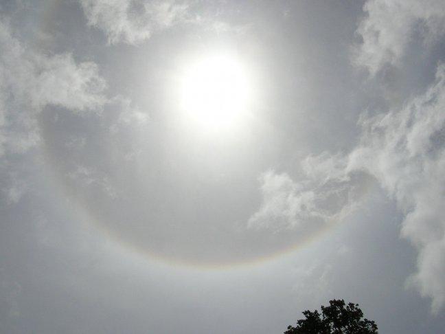 dezon omgeven door een regenboog