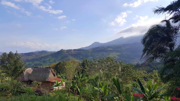 Vergeet de bounty-eilanden van Panama; ga de jungle in!
