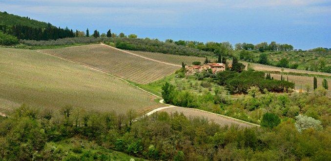 Lijnen en vlakken in het Toscaanse landschap