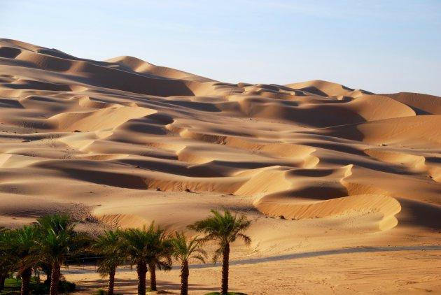 Oase in de woestijn