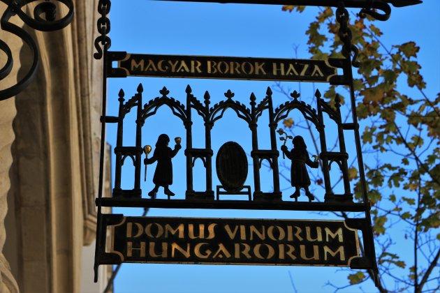 Domus Vinorum is een reis door wijnland Hongarije