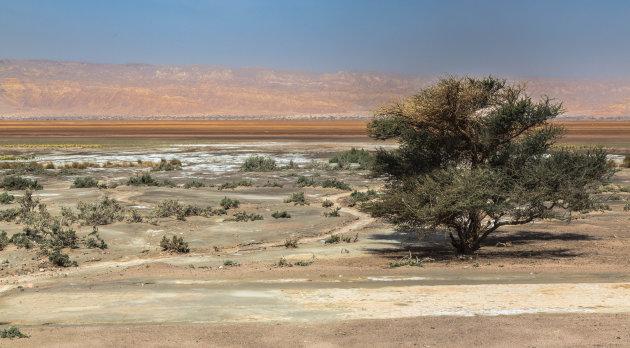 Op weg naar de Dode Zee