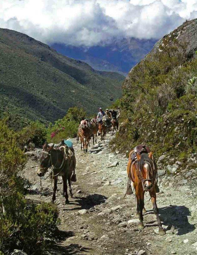 Andes trekking, op weg naar de 4200 meter