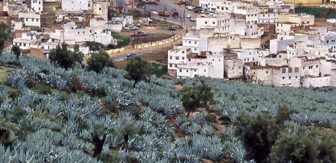Zicht op Moulay Idriss