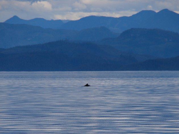 Prachtig Vancouver Island