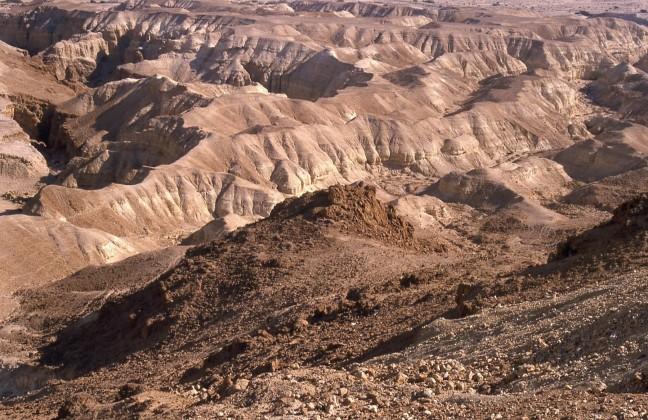 In de Negev